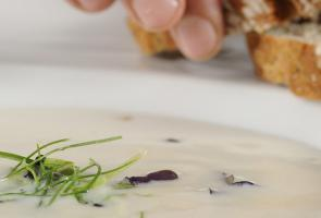 Grey cheese soup